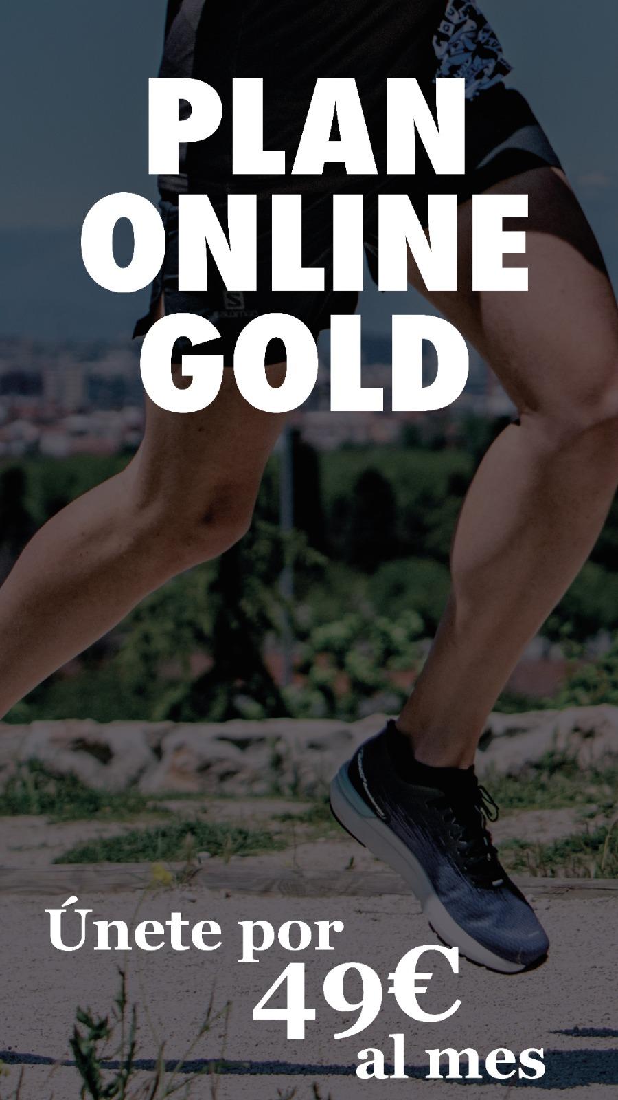 Plan Online Gold