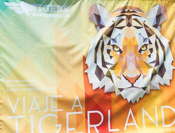 Tigerland 2017